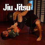 Jiu Jitsu Private Trainer